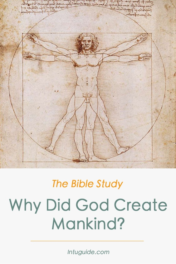 Why Did God Created Mankind People Da Vinci The Vitruvian Man Intuguide